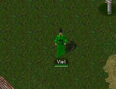 Viel1