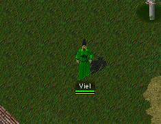 Viel3
